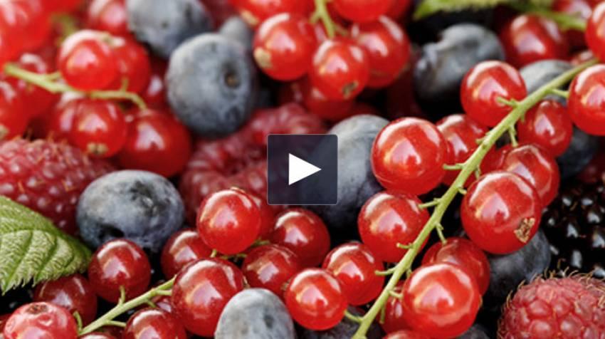 Propiedades de los frutos rojos