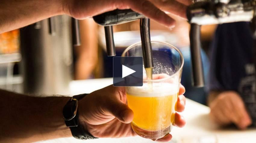 Cerveza y ácido úrico