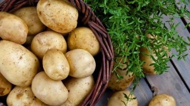 Patata:Beneficiosa para tu piel