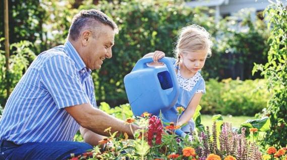 Plantas aromáticas en tu terraza o jardín
